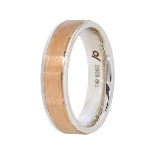 Agrentium wedding band-flat brushed with rim (6mm)